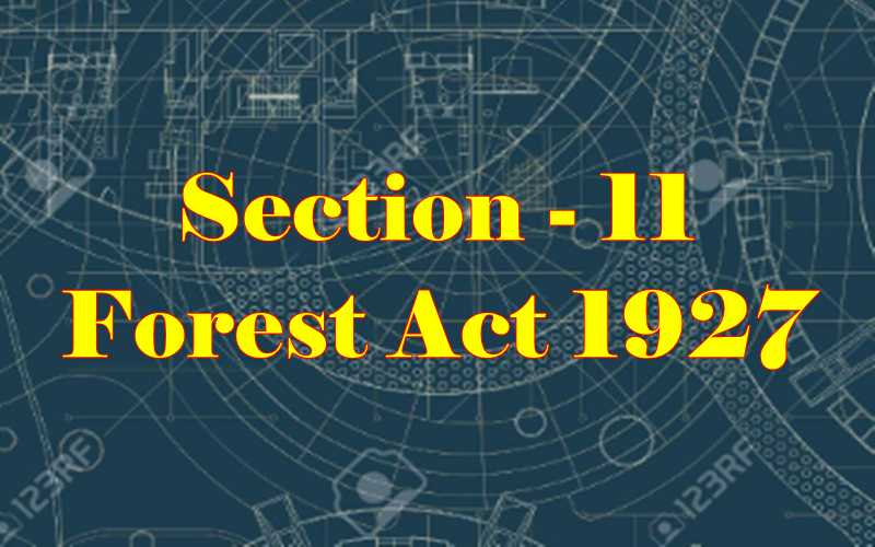 Section 11 of Indian Forest Act in Hindi